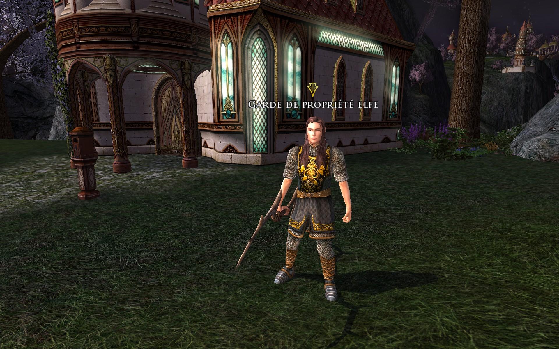 Garde de propriété Elfe (homme)