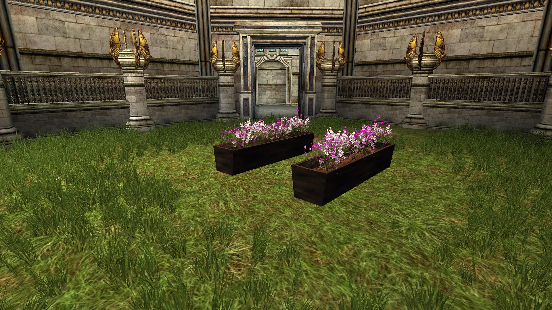 Pot de fleurs violet